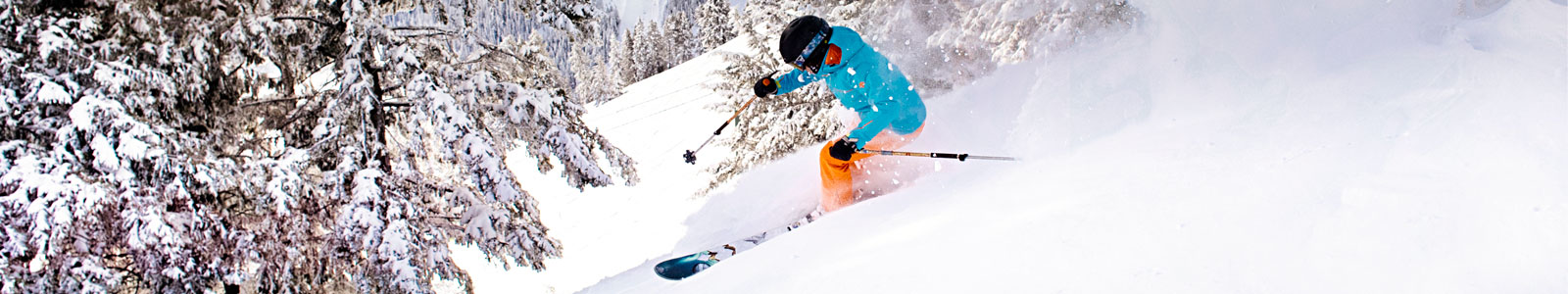 Ski & Snowboard Rentals
